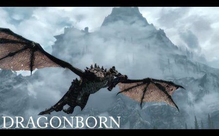 The Elder Scrolls 5: Dragonborn в 2013